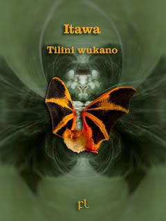 Itawa: Tilini wukano Cover