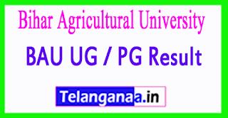 Bihar Agricultural University Result 2017 BAU UG / PG Result