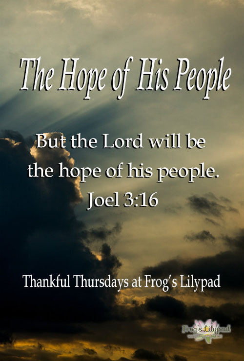 Frog's Lilypad: God is The Hope of His People