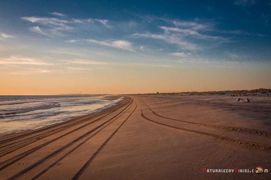 Playa de Castilla, Doñana (Huelva)