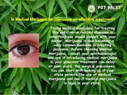 marijuanas medical purposes are not limited to the prevention of glaucoma Medical marijuana laws were not found to have a crime exacerbating effect on any of  drug abuse prevention and  even for limited medical purposes,.