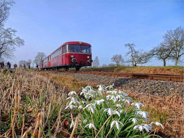 Frühling in Ostfriesland