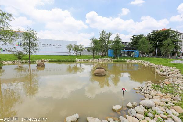 台中北屯|鉅虹建設海天橋水岸公園|百日草|落羽松|阿勃勒|生態池|貨櫃屋