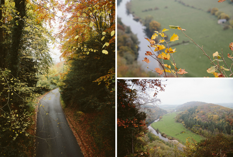 Autumnal Forest Adventures - Symonds Yat