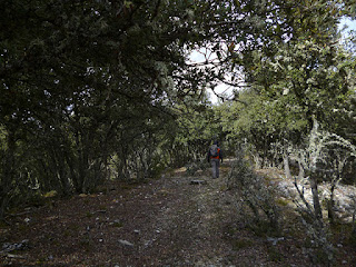 Loma del Cerro