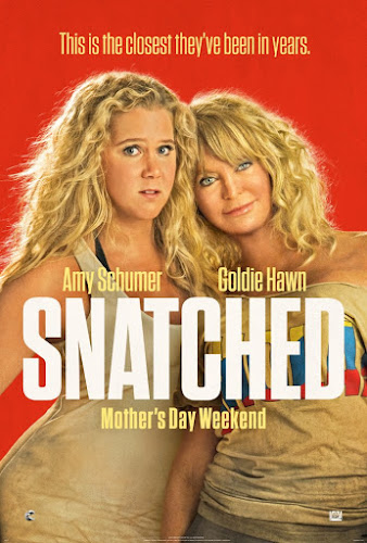 Snatched (BRRip 720p Dual Latino / Ingles) (2017)