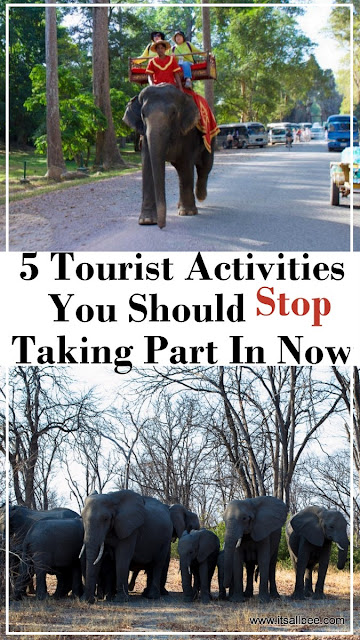 5 Tourist Activities You Should Stop Taking Part In Now