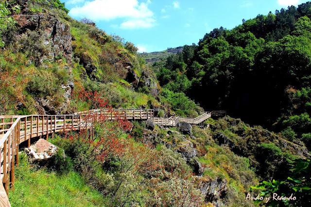 Ruta por las pasarelas de madera sobre el río Mao. Ribera Sacra, Orense