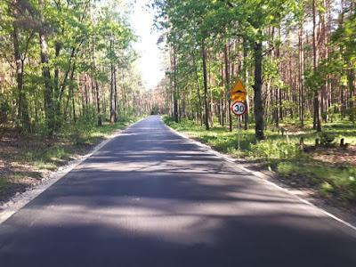 Droga Nowy Wilków - Górki, Kampinoski Park Narodowy