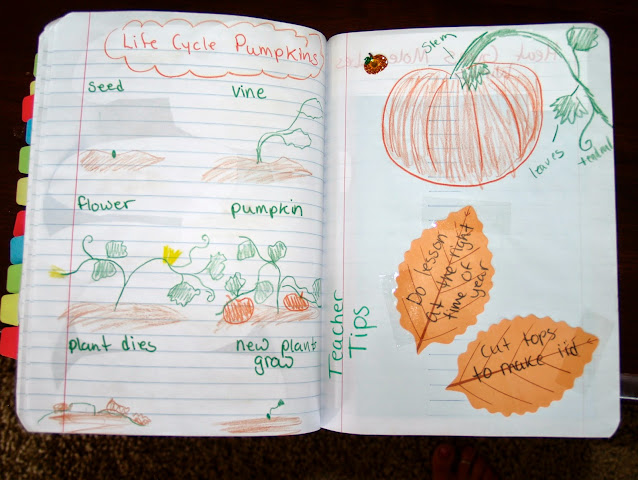 pumpkin activity for interactive notebook
