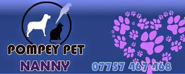 Dog walker, cat sitter & pet sitting Portsmouth & Southsea