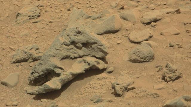 """""""Parque Jurásico"""" en Marte: Encuentran un """"cráneo de dinosauro"""" en una imagen de la NASA"""