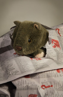 Shane with election results