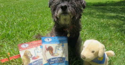 Dogs Beat the Summer Heat with Super Gravy #giveaway