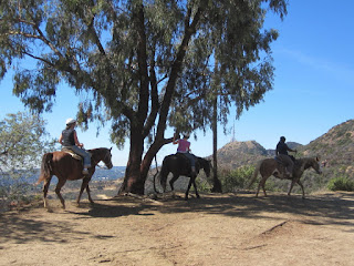 Horseback riders on Mt. Hollywood Drive