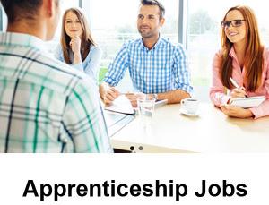 Apprentice Jobs Govt Apprenticeships Apply Online Form