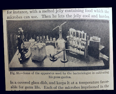 The lab equipment of a bacteriologist, 1920s