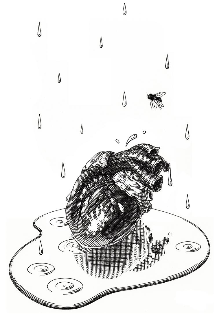 18-Heart-Olivia-Knapp-Cross-Hatch-Drawings-with-a-bit-of-Anatomy-www-designstack-co