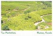 Postcard from Kerala, India