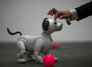 The Sony Aibo Robot: