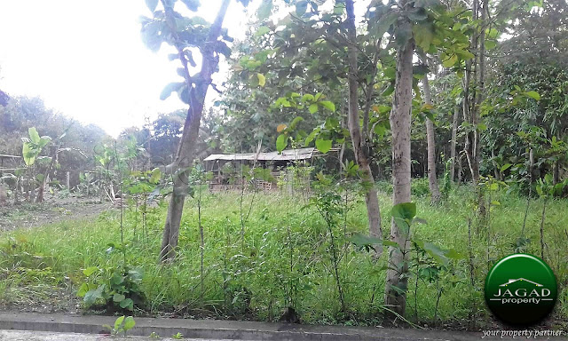 Tanah Cocok untuk Kavling jalan Wates Km 13