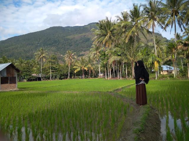 solok Sumatera Barat