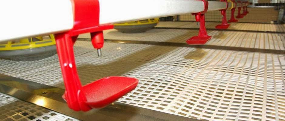 Biaya Pembuatan Kandang Close House Jual Peralatan Kandang Closed House Jual Kandang Baterai Generasi Terbaru Kandang Ayam Pedaging Potong Broiler Kandang
