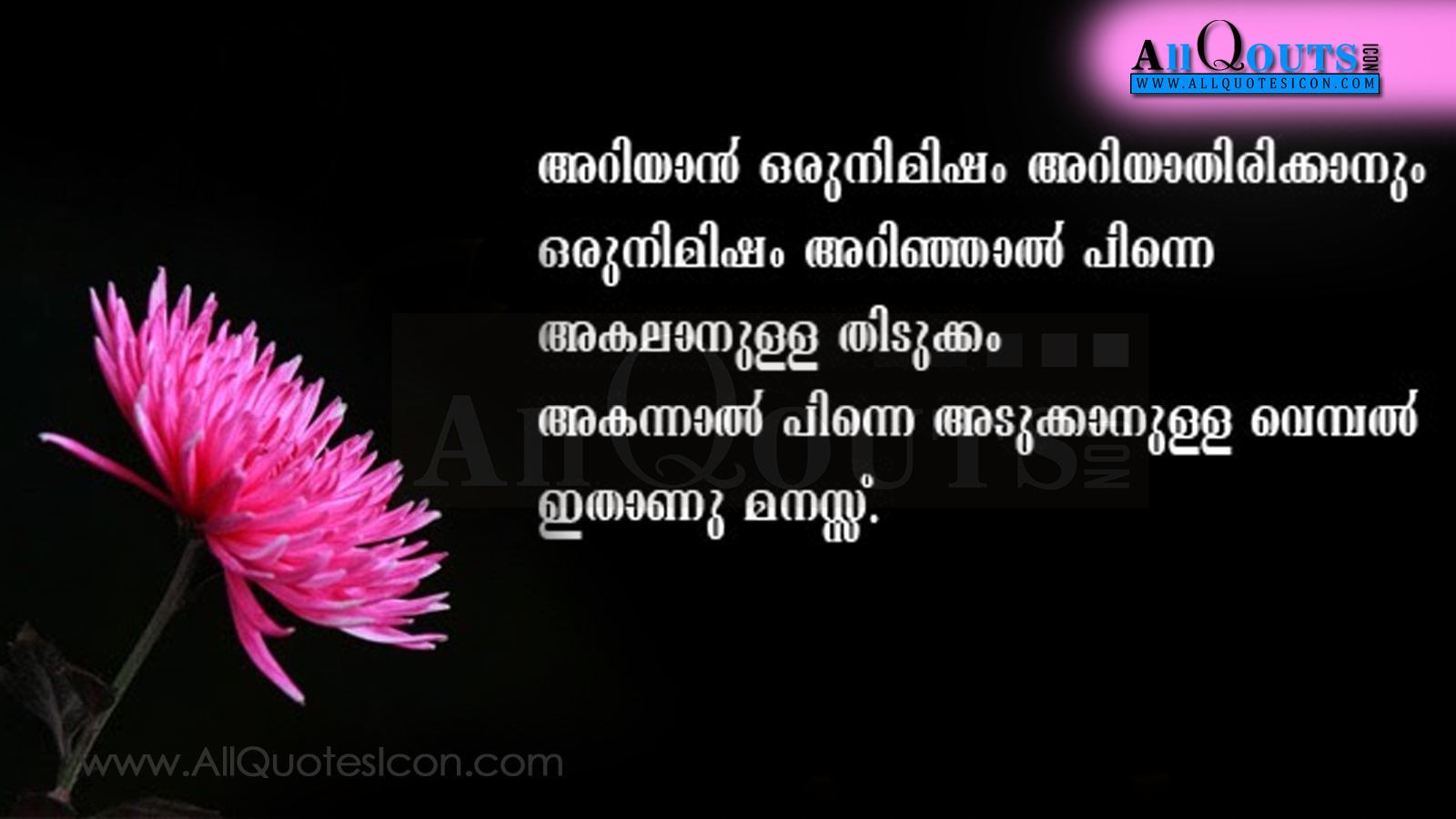 quotes on love and life in malayalam | iyu love is mater