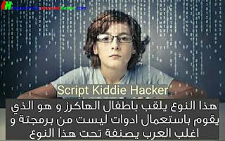 Script Kiddie Hacker