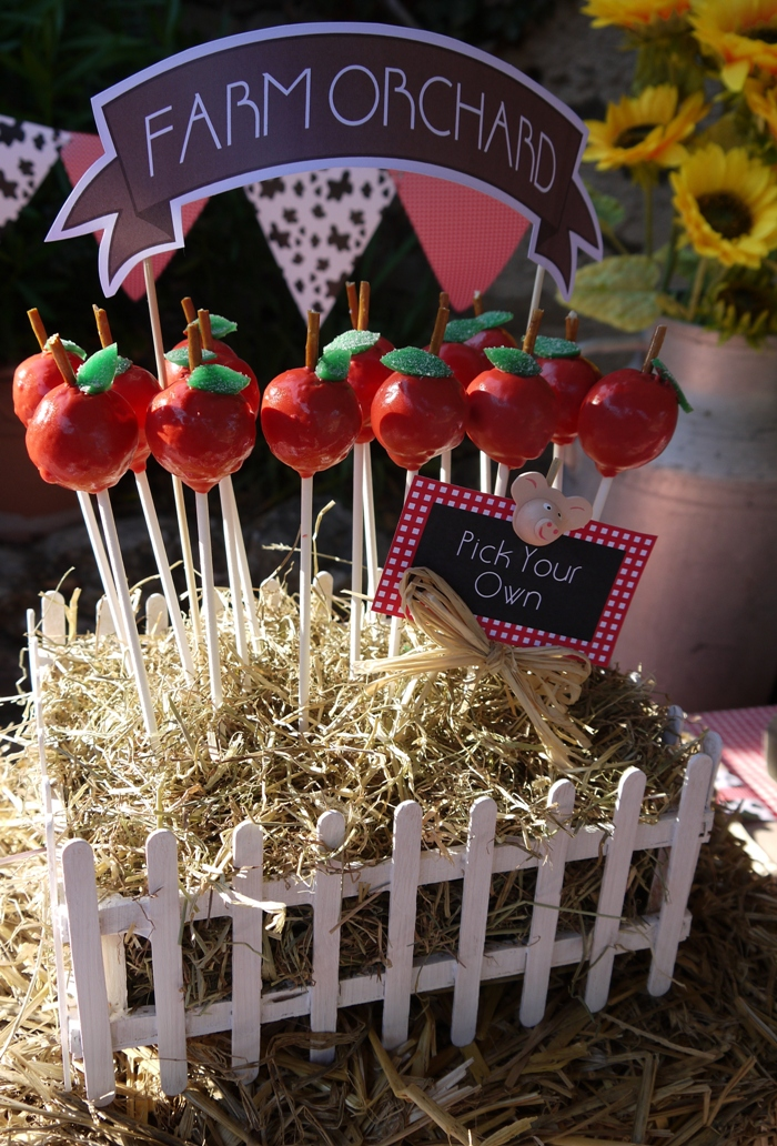 Diy Apple Cake Pops Amp Barnyard Birthday Centerpiece