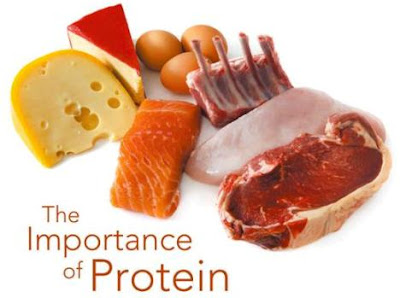 Importance of Protein for Athletes