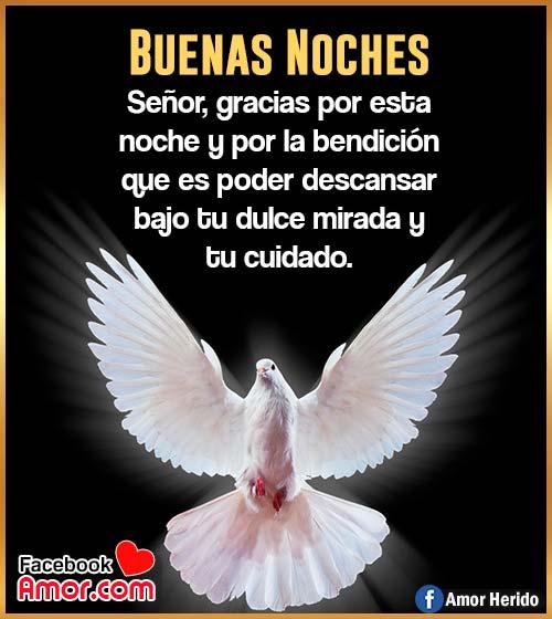 imágenes de buenas noches ángel