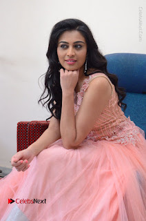 Actress Neha Hinge Stills in Pink Long Dress at Srivalli Teaser Launch  0104.JPG
