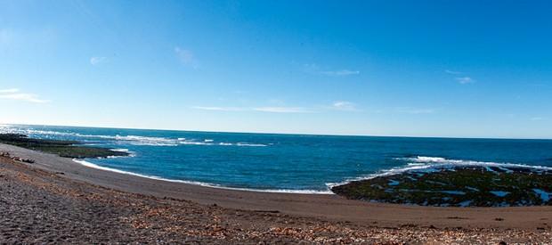 Canal de Ataque orcas punta Norte Península Valdes