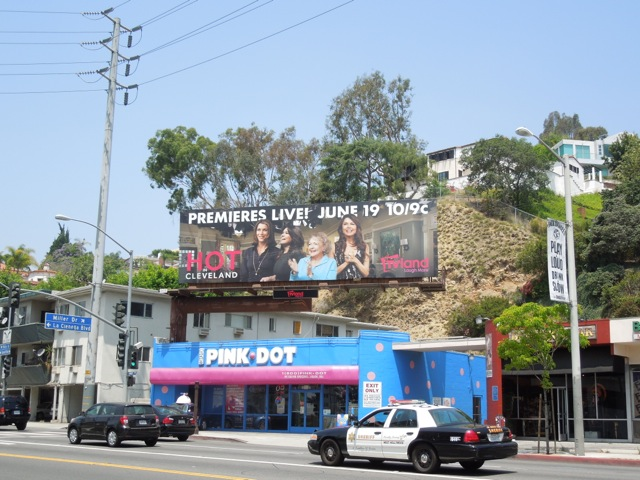 Hot in Cleveland season 5 billboard