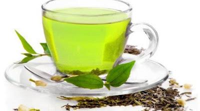 teh hijau sebagai antibiotik alami