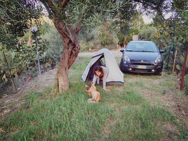 pies Alcantara camping