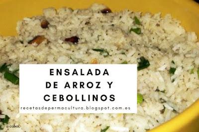 Ensalada de Arroz con Cebollinos y Berros