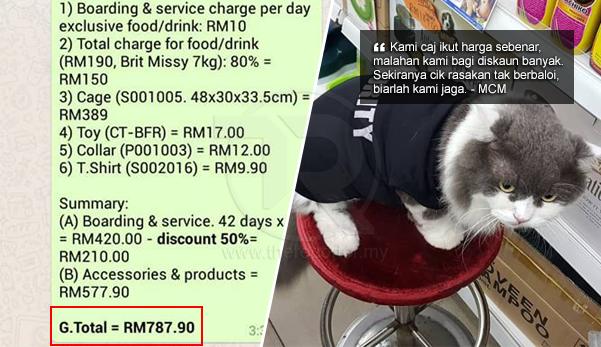 Adil Ke Saya Kena Bayar Harga Itu Walhal Kucing Saya Hilang