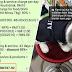 'Adil ke saya kena bayar harga itu, walhal kucing saya hilang' - Wanita terkejut dicaj RM787.90 untuk kos penjagaan kucingnya oleh pet shop ini