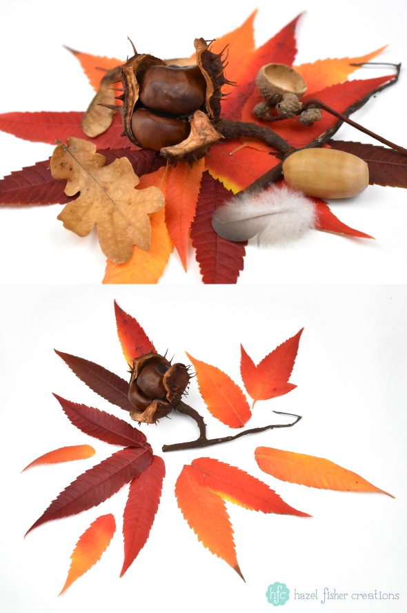 Things to Love About Autumn, Autumn Leaves photography by Hazel Fisher Creations