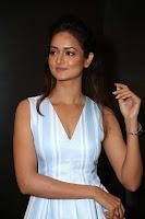 Shanvi (29).jpg