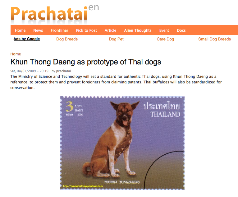 Are you a Pariah Dog fan?: LTPM dog as Thai dog prototype