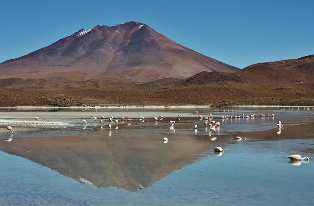 Laguna Honda, no altiplano andino da Bolívia