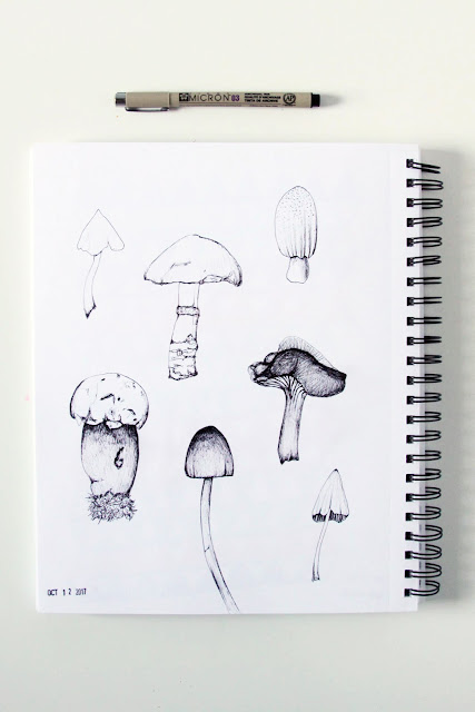 mushrooms, sketches, sketchbook, microns, Anne Butera, My Giant Strawberry