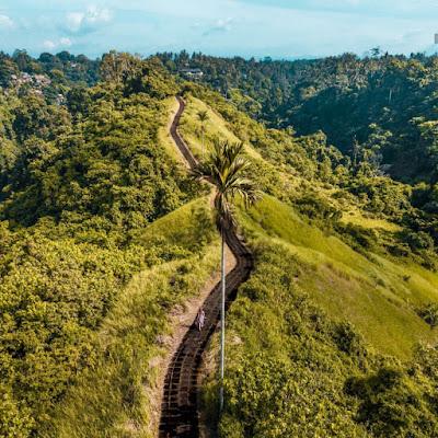 Campuhan Ridge Walk, Intip Suasana Bali yang Berbeda Disini!