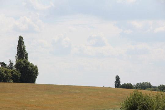 reneklodenkonfitüre I fräulein text