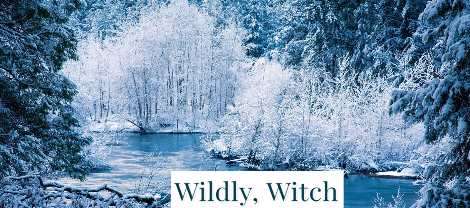 Wildly, Witch