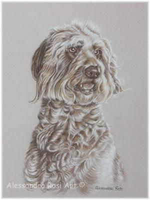 pet portrait, custom portrait drawing of a dog