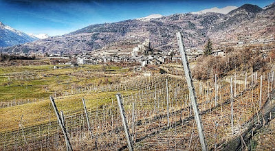 vigneti eroici valle d'aosta